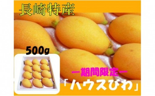 お待ちかね!長崎特産「ハウスびわ」500g(箱入り)