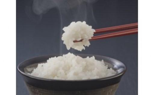 R-2 笠間市特選コシヒカリ米(白米) 15kg