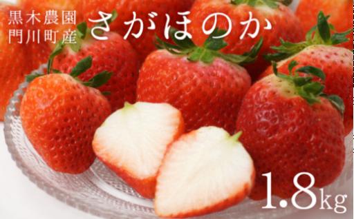 門川町産さがほのか1.8kg