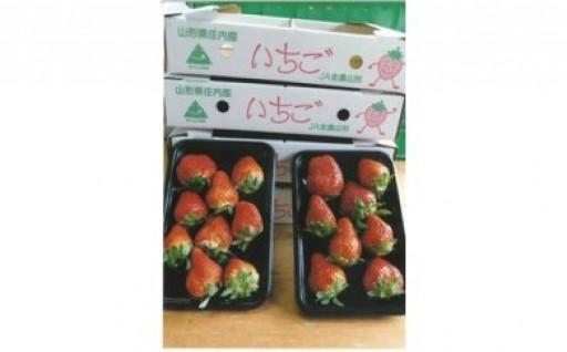 春イチゴはいかかですか