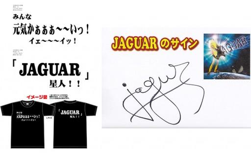 JAGUAR Tシャツ(M)セット