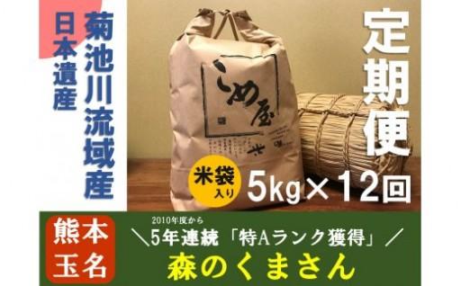 【定期便】熊本県玉名産お米「森のくまさん」