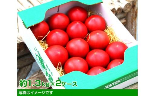 【期間限定】甘くてオススメ! 海陽トマト