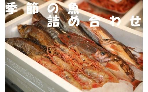 ひらめ、カレイ、鯛、甘えびなど・・・春の魚詰め合わせ!