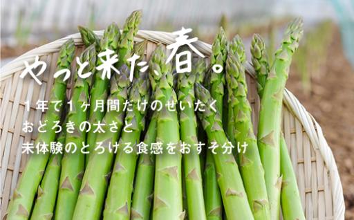 北海道栗山町産アスパラ大人気!