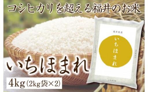 【数量限定】平成31年「福井県産いちほまれ」4kg