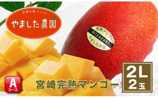 【やました農園】宮崎完熟マンゴー2Lサイズ2個入りセット