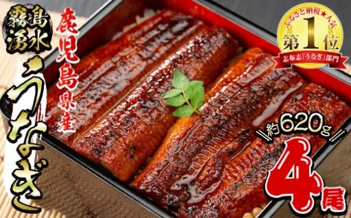 お待たせいたしました!ご入学や新生活のお祝いに霧島湧水鰻蒲焼
