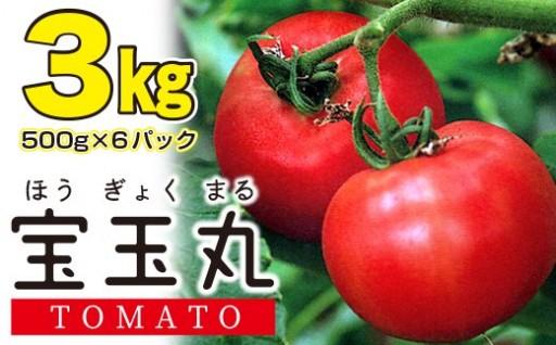 【隔離ベッド水しぼり栽培】高糖度トマト3kg
