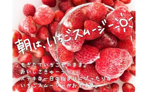 北海道栗山町産🍓冷凍の完熟いちご🍓