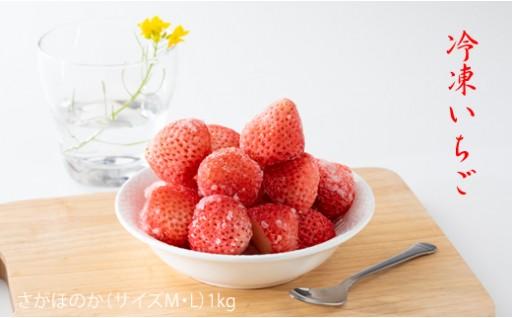 冷凍いちご(さがほのか)1kg