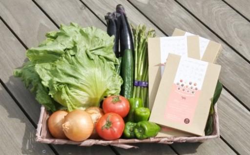 グルテンフリーカレー+自慢の新鮮旬の野菜セット
