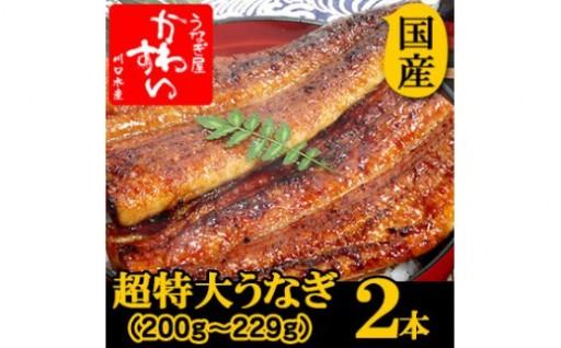 丼からはみでるボリューム満点国産うなぎの蒲焼を2本セットに!