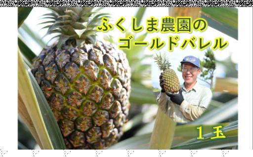 【沖縄県東村】ふくしま農園のゴールドバレル(1玉)1.7kg