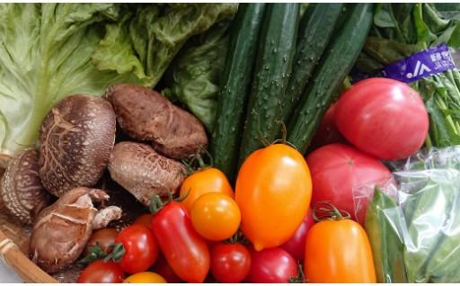 【じばさんず】はだのの春野菜はいかがですか?