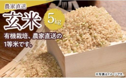 【宮崎県川南町】健康志向の方に!農家直送の玄米(コシヒカリ)