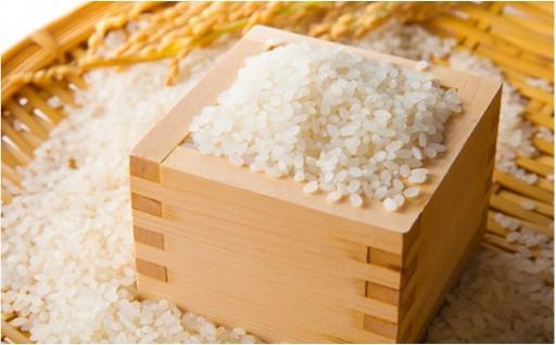 特Aの味をどうぞ!!農家のつくったお米「にこまる」