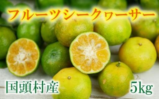 12月より発送【国頭村産】フルーツシークヮーサー(5kg)