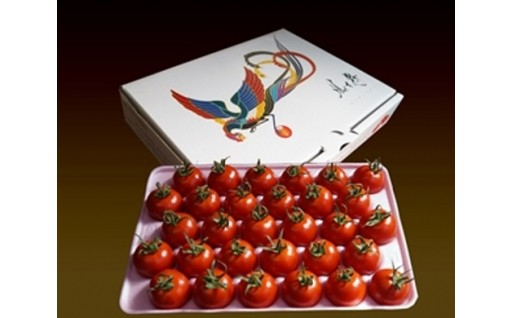 フルーツトマト鳳玉舞