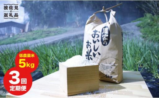 【先行予約!限定20セット】安心安全の低農薬米5㎏定期便