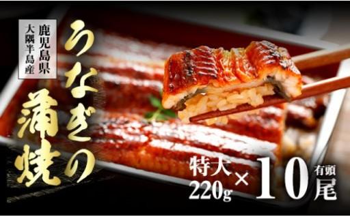 5月に入り、鰻をお選びになる方が増加傾向です。