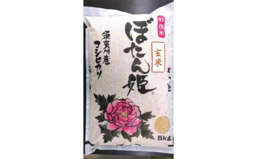 【ぼたん姫 玄米】大粒の粒厚1.9mm以上で選別された一等米