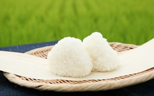 井上農場の特別栽培米ひとめぼれ5kg×2袋(つやポン付き)