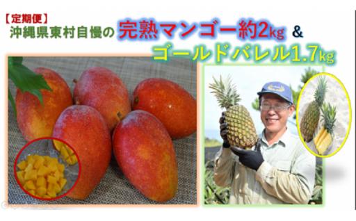 【定期便】完熟マンゴー約2kg&ゴールドバレル1.7kg