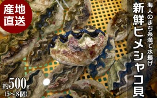 海人のまち直送!新鮮ヒメシャコ貝(約500g/5~8個)