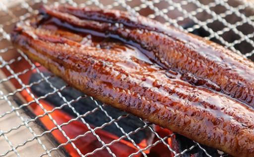 うなぎ蒲焼約200g×3尾,きざみ鰻50g×2袋,タレ付き