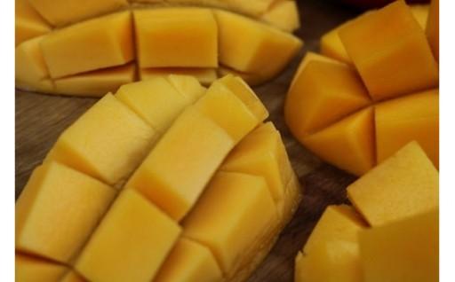 【限定20・家庭用】ミナミマンゴーハウスの完熟マンゴー2kg