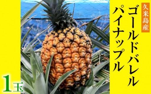 【2019年発送】久米島産「ゴールドバレル」パイナップル1個