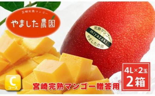 【特大サイズ】宮崎完熟マンゴー贈答用(4L×2玉入)2箱