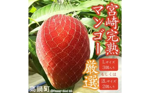 【出荷開始しました!】宮崎県産完熟マンゴー