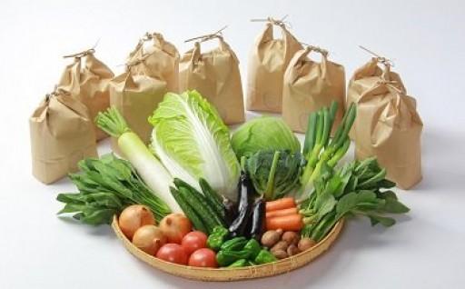 ふぁせるたむら お米・季節の野菜詰合せ定期便(3回)