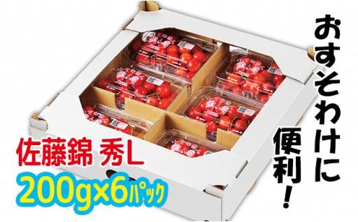 6/9まで申込延長♪山形産さくらんぼ(佐藤錦)1.2kg