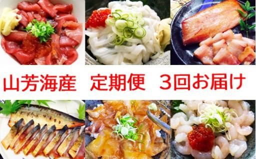 今人気の定期便!山芳海産丼の素【3回お届け】