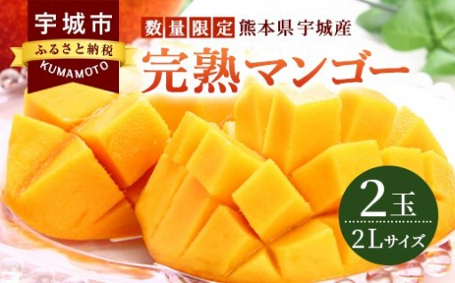 完熟マンゴー 2玉 2Lサイズ