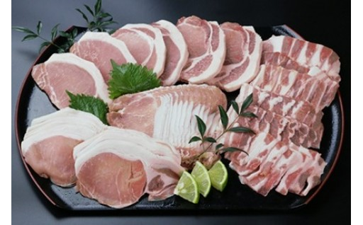 「甘い脂身あっさりした肉質」の『日向豚の盛りだくさんセット』