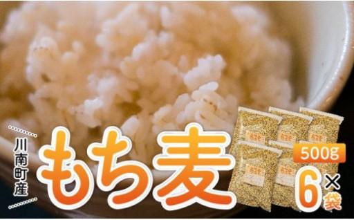 食物繊維が豊富で、もちもち、プチプチとした食感の「もち麦」