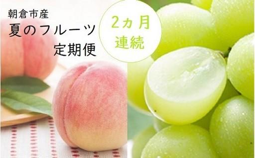 【6月30日まで!】朝倉 夏のフルーツ定期便