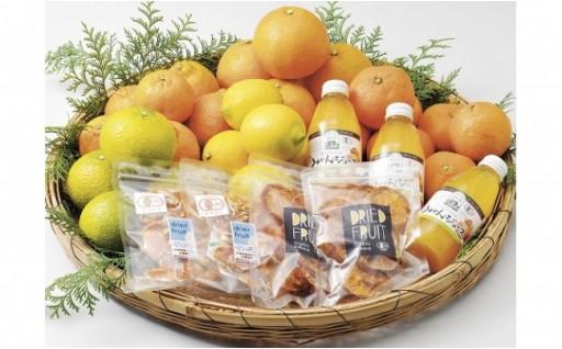 安心安全オーガニックの柑橘類が毎月届く定期便
