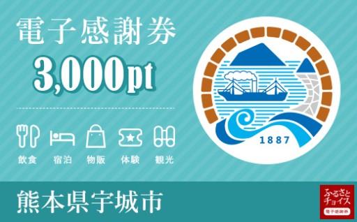 【熊本県宇城市】電子感謝券3,000pt 会員限定のお礼の品