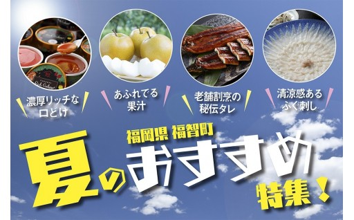 Welcome Summer!福智が贈るおススメ【夏】特集!