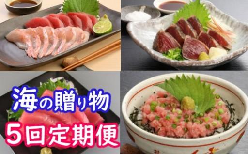 高豊丸マグロ/藁焼きタタキ4節セット/高知県産本鮪中トロ