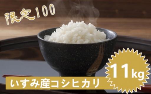 いすみ市産コシヒカリ白米11kg(令和元年産)限定100