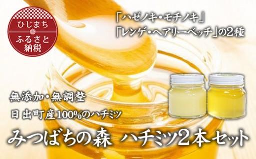 【数量限定】純粋ハチミツ2本セット