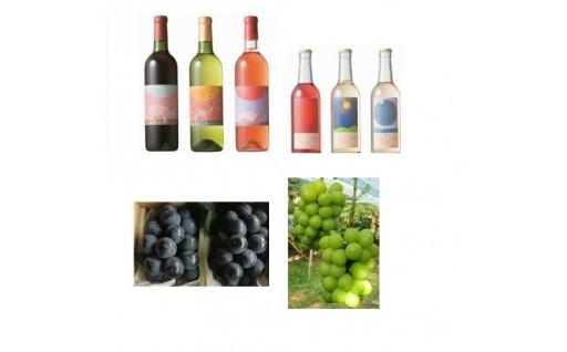 宇佐市安心院産のワインとぶどう