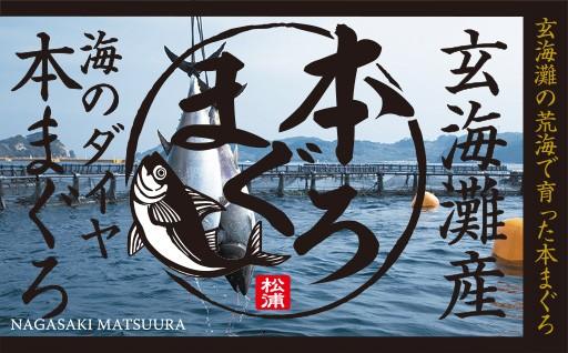 海鮮王国長崎松浦が誇る最高級養殖「本まぐろ」