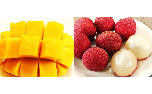 【大人気】メリーガーデンの完熟マンゴー&ライチセット